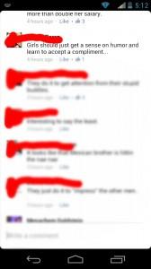 screenshot of facebook troll